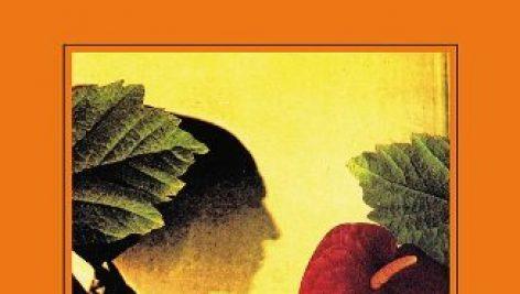 مجموعه داستان کوتاه اسپانیایی موسیقی برای آفتاب پرست ها
