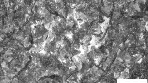 ساختار ميكروسكوپي چدن خاكستري كم كربن