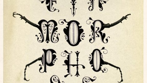معرفی و دانلود نسخه انگلیسی کتاب مسخ کافکا The Metamorphosis