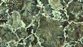 ساختار میکروسکوپی فولاد