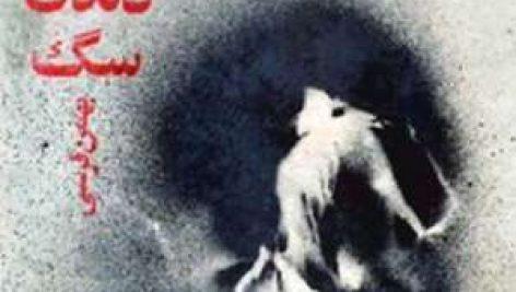 دانلود مجموعه داستان کوتاه فارسی زیر دندان سگ بهمن فرسی