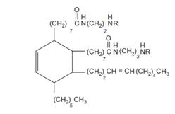 ساختار شیمیایی پلی آمید