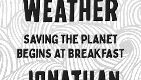 معرفی و دانلود کتاب ما آب و هوا هستیم | We Are the Weather